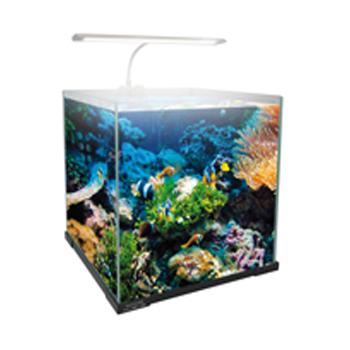 Filtro per acquario interno ed esterno aquashopping for Acquario con filtro esterno
