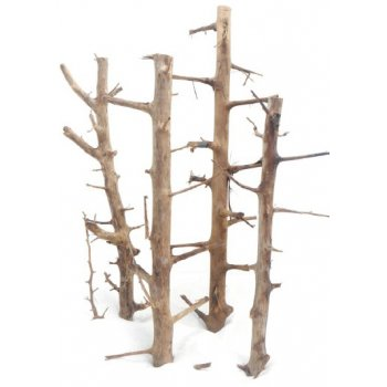 HAQUOSS LONG HANDS WOOD, radice naturale decorativa